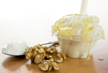 Saveurs de gelato yogourt grec au miel et aux noix du Quai des glaces